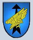 Division Spezielle Operationen (DSO)