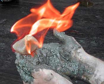 Marineforum - 'brennendes Eis'
