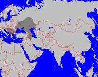 Das Großbulgarische Reich (vor 650) und das Donaubulgarische Reich (um 900)