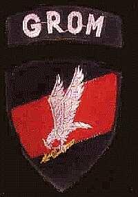 Polen — GROM —  Grupa Reagowania Operacyjno Mobilnego
